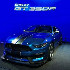 Ford Mustang Shelby GT in beautiful blue Ford Mustang Shelby Gt, Shelby Gt 500, Mustang Cobra, Ac Cobra, Mustang Gt 350, 2014 Mustang, Modern Muscle Cars, American Muscle Cars, Us Cars