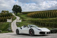Stunning Ferrari 488 Spider Top Down Pictures! - GTspirit. The 488 is great but it's so wide! Hard to see out of too for backing into a parking space. Put it next to a 246 Dino for a size comparison!! I wish Ferrari would make smaller sized cars again.