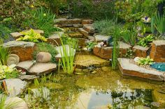 Amazing Water Features for Your Yard