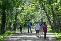 Brazos Bend Sate Park-5,000 acres of lakes and live oak trees draped in Spanish moss are home to white-tailed deer and even alligators.