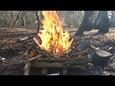 (Video) Build A Fire To Last All Night And Through Wet Weather - Page 2 of 2 - Survival Expertise