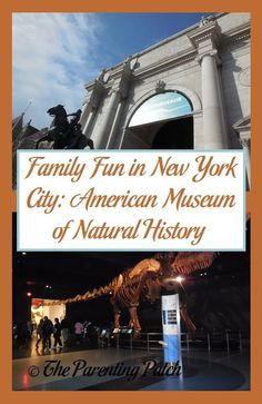 Family Fun in New York City: American Museum of Natural History