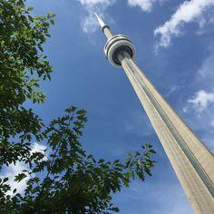 Dois símbolos do Canadá juntos: a CN Tower e as folhas de Bordo, que estampam milhares de coisas no Canadá, inclusive a bandeira do país. Foto: Camille Panzera #MDemToronto #MDnoCanada