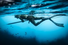 Spearfishing by Michael Raabe on 500px