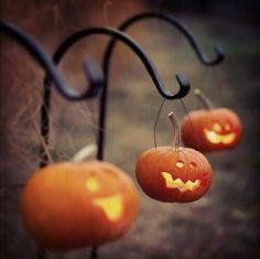 Fall pumpkin halloween decor for the yard