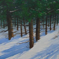 January Pines,   watercolor, winter landscape, pine trees, snow with shadows