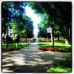 Guilford College - This is where my next adventure begins. Very nervous and excited all at the same time!