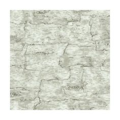 York Wallcoverings LM7987 Birch Bark Wallpaper Off White Home Decor (185 BRL) ❤ liked on Polyvore featuring home, home decor, wallpaper, off white, cream textured wallpaper, double roll wallpaper, york wallcoverings, birch bark wallpaper and beige wallpaper