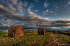 Google Image Result for http://www.tantramarmarsh.com/images/Tantramar_Marsh_TWJ_salt_marsh_sunset_hay_bales_20090915_8.jpg