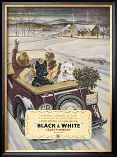 Vintage ad for scotch whisky