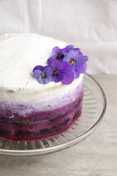 Blueberry Cake with Coconut Frosting Recipe. Healthy, #glutenfree #vegan celebration cake with delicious coconut frosting.