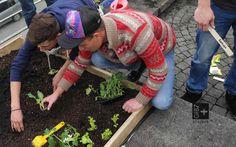 Jeder Lernende durfte seine eigenen Setzlinge mitbringen und anpflanzen, war aber auch dafür verantwortlich.