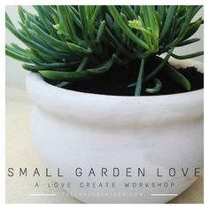 Small Garden Love Workshop | The Love Create Co. Fig, Color Blocking, Garden Design, Planter Pots, Love, Create, Workshop, Gardens, Paint