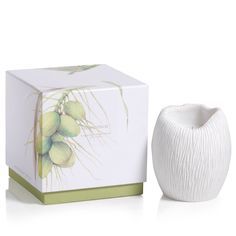 Apothecary Guild Sandstone Scented Candle - Island Palm