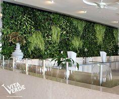 If you don't have enough space, garden vertically! #verticalgarden