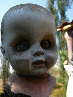 Mexico's 'Island of The Dolls' is the creepiest place on earth Hey, anyone out there who wants to marry me and is currently planning the honeymoon! Guess where I do not want to go! La Isla de la Munecas, The Island of The Dolls. For more infromation:- http://www.nast.com.mx/tours.php #Mexico #Travel  #Lsland  #Dolls