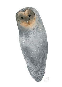 Black barn owl art print Barn owl watercolor Owl by TukoniTribe