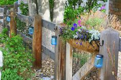 Solar lights are inexpensive and really beautiful in the garden. Here'… :: Hometalk