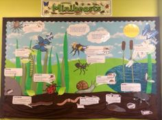 An example of what you can do with our fab Minibeast resources!