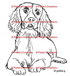 english springer spaniel coloring pages - photo#10