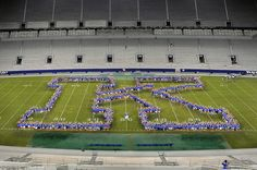 A 'K'lass picture in Commonwealth Stadium during K Week at UK.