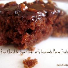 Best Chocolate Sheet Cake   Moore or Less Cooking Food Blog