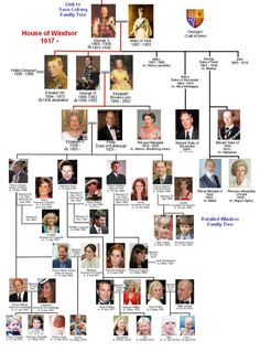 england royal bloodline House of Windsor Family Tree Windsor Family Tree, Royal Family Trees, House Of Windsor, English Royal Family Tree, British Royal Family History, British Royal Families, Princesa Victoria, Reine Victoria, Casa Real