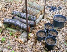Start Your Own Shiitake Mushroom Logs - Did this with H in an Appalachian Sustainable Development workshop. The only hard thing is waiting a year. Growing Shiitake Mushrooms, Growing Mushrooms At Home, Garden Mushrooms, Wild Mushrooms, Stuffed Mushrooms, Organic Gardening, Gardening Tips, Mushroom Spores, Mushroom Cultivation
