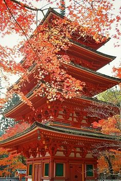 Hase-ji Temple: Autumn leaves and five-storied pagoda Hase dera temple, Nara … – Japan : Autumn/Fall - architecture house Japanese Landscape, Japanese Architecture, Ancient Architecture, Nara, Geisha, Japan Kultur, Places Around The World, Around The Worlds, Beautiful World