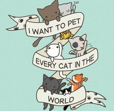 I want to pet every cat in the world tattoo idea
