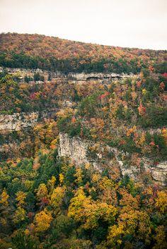 Cloudland Canyon, Chattanooga  Cumberland Plateau, TN, USA