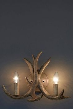 Buy Antler 2 Light Wall Fitting from the Next UK online shop