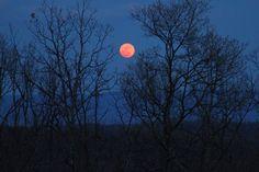 Eclipse lunar gerou última 'lua de sangue' do ano - primeira de uma sequência de 4 que acontecerão até setembro 2015.