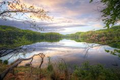 radnor lake state park | ... in from my favorite spot to catch a sunrise at Radnor Lake State Park