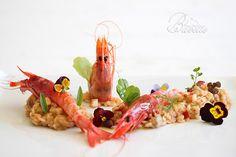 Gamba roja de Garrucha sobre risotto de verduras Read more at http://www.bavette.es/arroces/4297-gamba-roja-de-garrucha-sobre-risotto-de-verduras/#FzSVlZWwwdAuQjPj.99