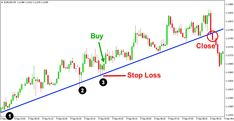 Learn To Trade Forex Forex Trading Stock Market Forex System