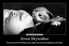 carteles skywalker descansar gatosyoda galaxia desmotivaciones