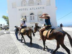 Fotografía: Laura Varela Atlantis, Santorini, Horses, Animals, Viajes, Animales, Animaux, Animal, Animais