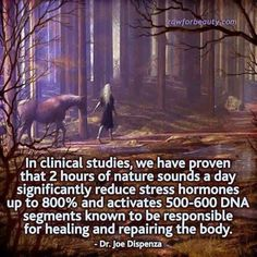 2 hours of nature sounds a day significantly reduce stress hormones up to and activates DNA segments known to be responsible for healing and repairing the body-Dr Joe Dispenza Nature Sounds, All Nature, Nature Pics, Nature Quotes, Holistic Healing, Natural Healing, Holistic Medicine, Holistic Wellness, Natural Medicine