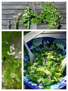 SALADE MET SMAAK- EN MOOIMAKERS UIT DE TUIN Ingrediënten salade: - gewone sla - Vogelkers (blad & bloemtopjes) - Look zonder look (blad & bloemtopjes) - Pinksterbloem (bloemtopjes) - Vergeet-me-nietjes (bloemtopjes). Ingrediënten dressing: - olie & azijn - peper & zout - honing of paardenbloemstroop