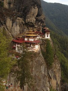 The famous Tiger's Nest Monastery in Paro Valley, Bhutan. How to even build this?!!! Wow!!