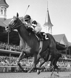 Affirmed. 1978 winner of the Kentucky Derby. The last horse to win the Triple Crown.