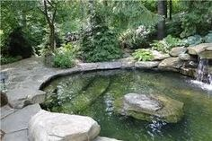 Pond pool, much more natural looking than a traditional inground.