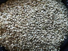 Health benefits of garcinia cambogia tea