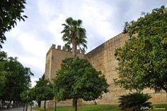 GiroVaghe: Itinerari spagnoli: Jerez de la Frontera