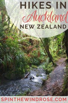Whilst the CBD is a huge, skyscraper-clad city, there are many walking tracks in Auckland that allow you to escape into the bush or climb volcanoes! - spinthewindrose.com