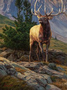 Current Work — The Art of Dustin Van Wechel Wildlife Paintings, Nature Paintings, Wildlife Art, Animal Paintings, Animal Drawings, Elk Drawing, Elk Pictures, Animal Medicine, Deer Art