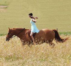 Instagram media by my_flyinghorse - ❤ • PC : @trickshetty •  #horse #equestrian #equestriangirl #liberty #dressage #freedressage #free #dressur #freiheit #like4like #follow4follow #l4l #f4f #horse #horseride #horselove #pfw_post #pfh_post #pspwtd_pferd #yoho_post #pt_abm #picoftheday