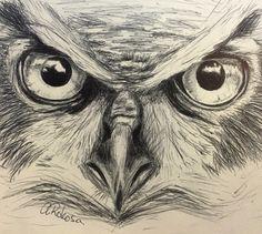 #owl #art #drawing #pen #artist #love #life #photo