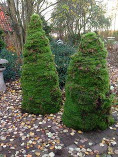 Fru Pedersens have: Eventyrlige mos juletræer.